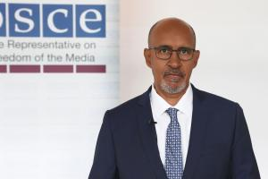 Harlem Désir, OSCE Representative on Freedom of the Media (OSCE)