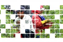 Das Fair-Food-Programm der Koalition der Arbeiter von Immokalee besteht aus Partnerschaften zwischen Landarbeitern und Supermarkt-Giganten und Fast-Food-Ketten und sorgt für Fairness in den Lieferketten.