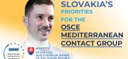 In 2018, Slovakia is chairing the OSCE Mediterranean Contact Group. Lukáš Parízek, State Secretary of the Ministry of Foreign and European Affairs of the Slovak Republic, talks about their priorities to support the OSCE's Mediterranean Partners for Co-operation.