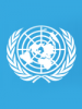 United Nations Peacemaker